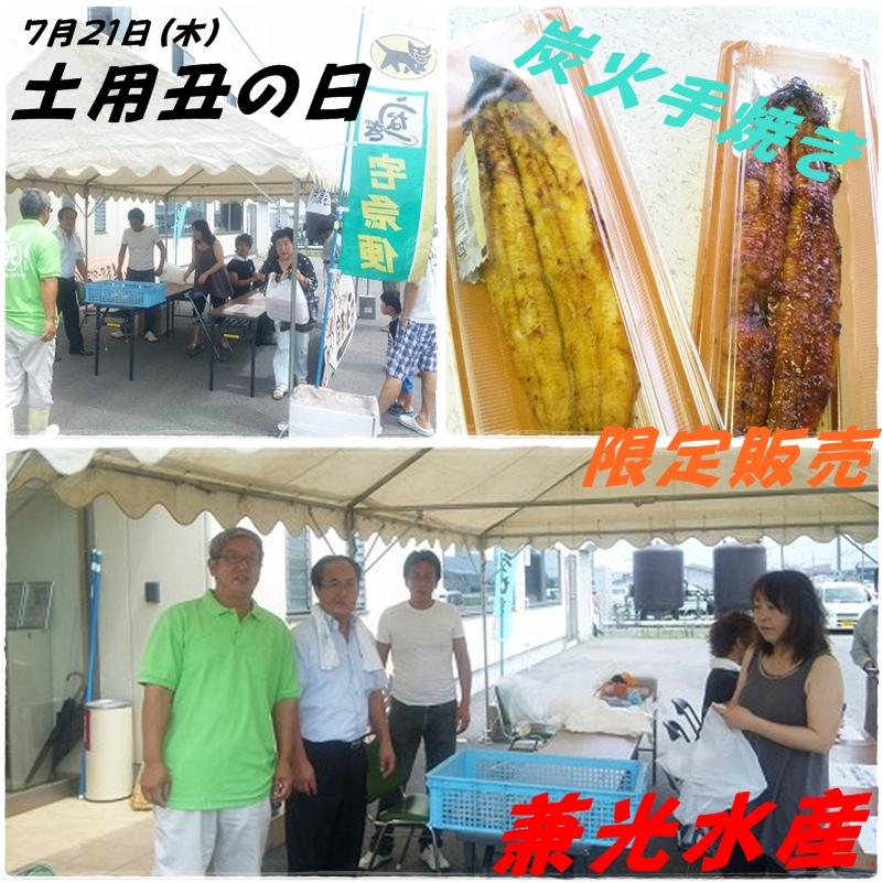 兼光水産 土用丑の日 .jpg