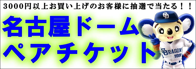 名古屋ドームペアチケット.JPG