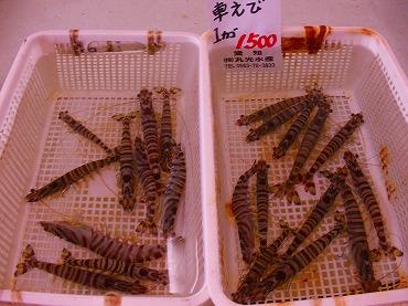10月13日売店 004.jpg