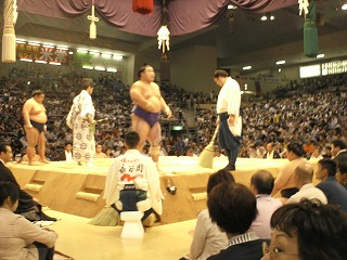 本場所 愛知県体育館 3