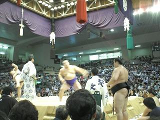 本場所 愛知県体育館 5