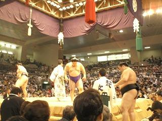 本場所 愛知県体育館 8