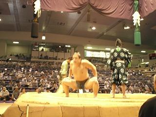 本場所 愛知県体育館 11