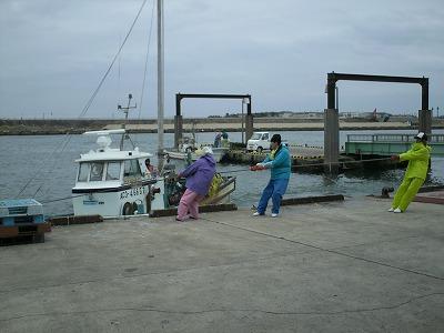 船と綱引き