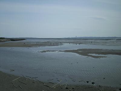 汐干狩り場
