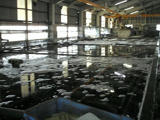 丸光水産 水槽 第2工場