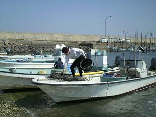 吉田漁港買付