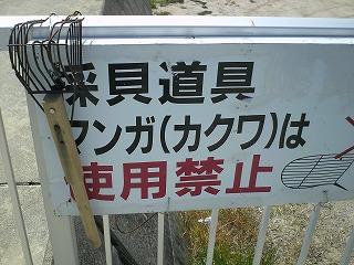 吉田潮干狩り場